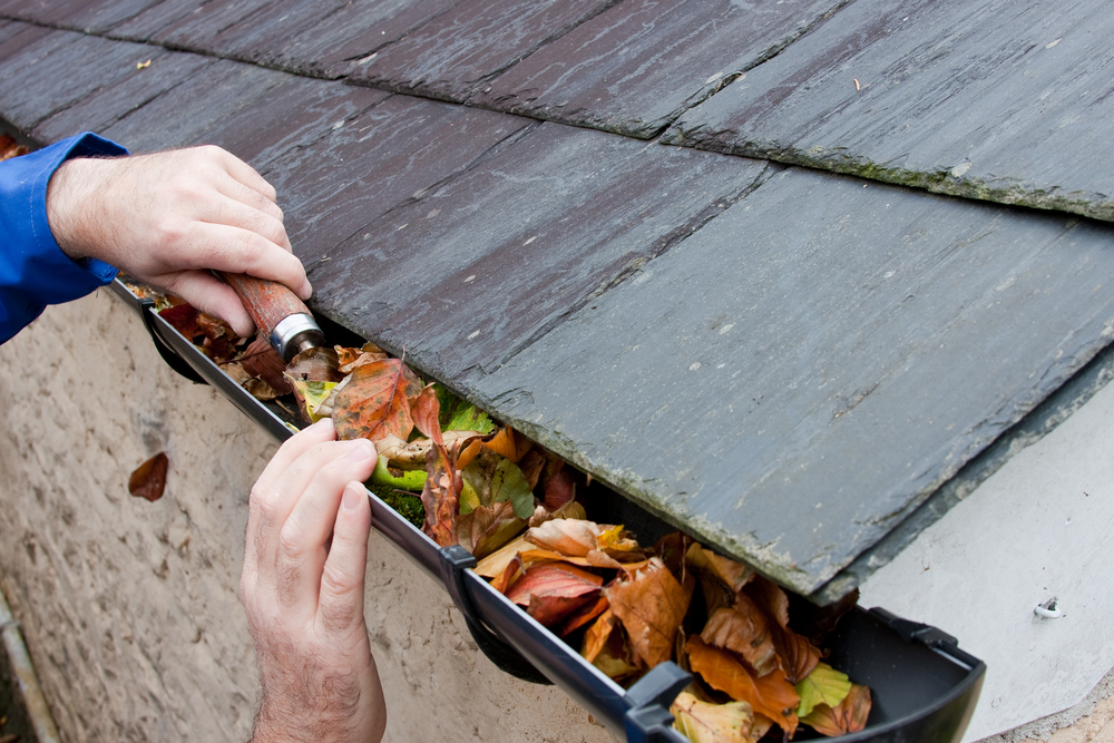 Fall Home Maintenance Tips must-do fall home maintenance tips for 2014 - aprilaire