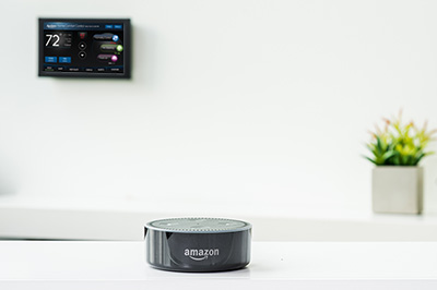 8920W Works with Amazon Dot