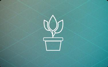 HealthyHome-BluePrints-plants