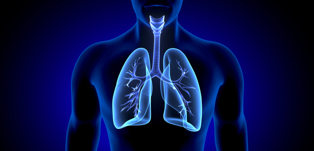 HHResource_NowTimeToTakeCareofLungs