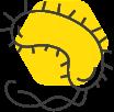 icon-bacteria)